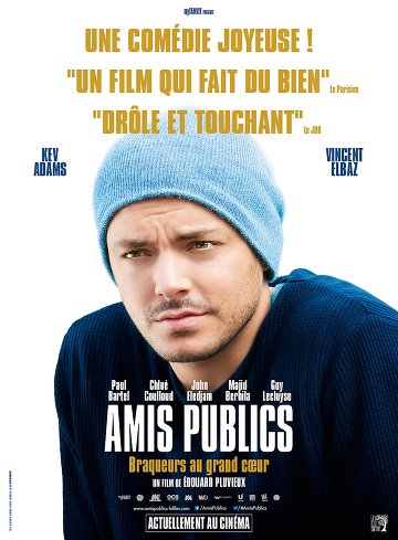 Amis publics FRENCH DVDRIP 2016