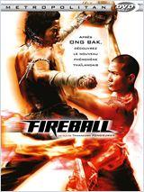 Fireball FRENCH DVDRIP 2010