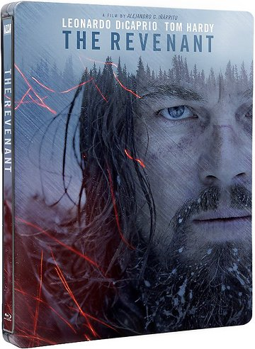 The Revenant FRENCH BluRay 1080p 2016