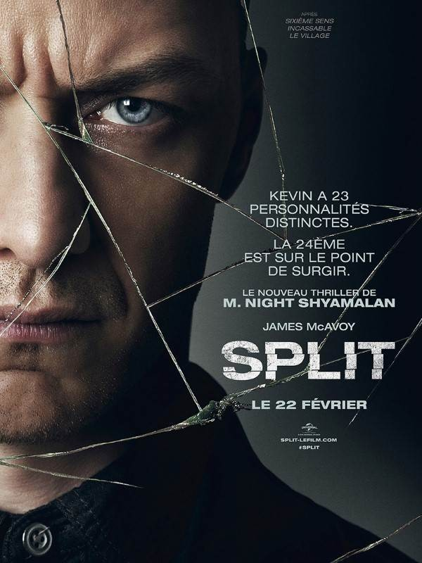 Split VOSTFR DVDRIP x264 2017