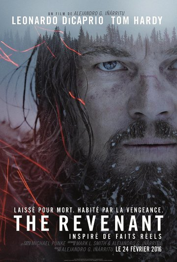 The Revenant FRENCH DVDRIP x264 2016