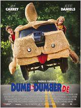 Dumb & Dumber De FRENCH BluRay 1080p 2014