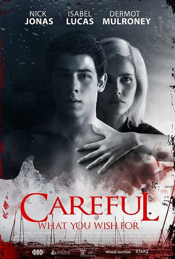 Careful What You Wish For FRENCH DVDRIP 2016
