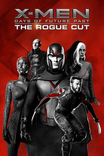 X-Men: Days of Future Past TRUEFRENCH DVDRIP ROGUE CUT 2014