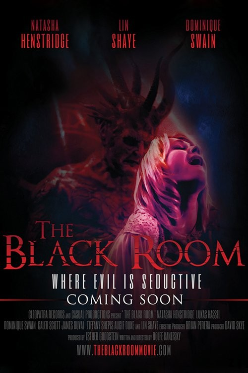 The Black Room FRENCH WEBRIP 2017