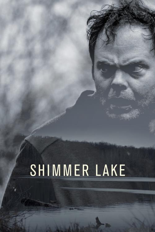 Shimmer Lake FRENCH WEBRIP 720p 2017