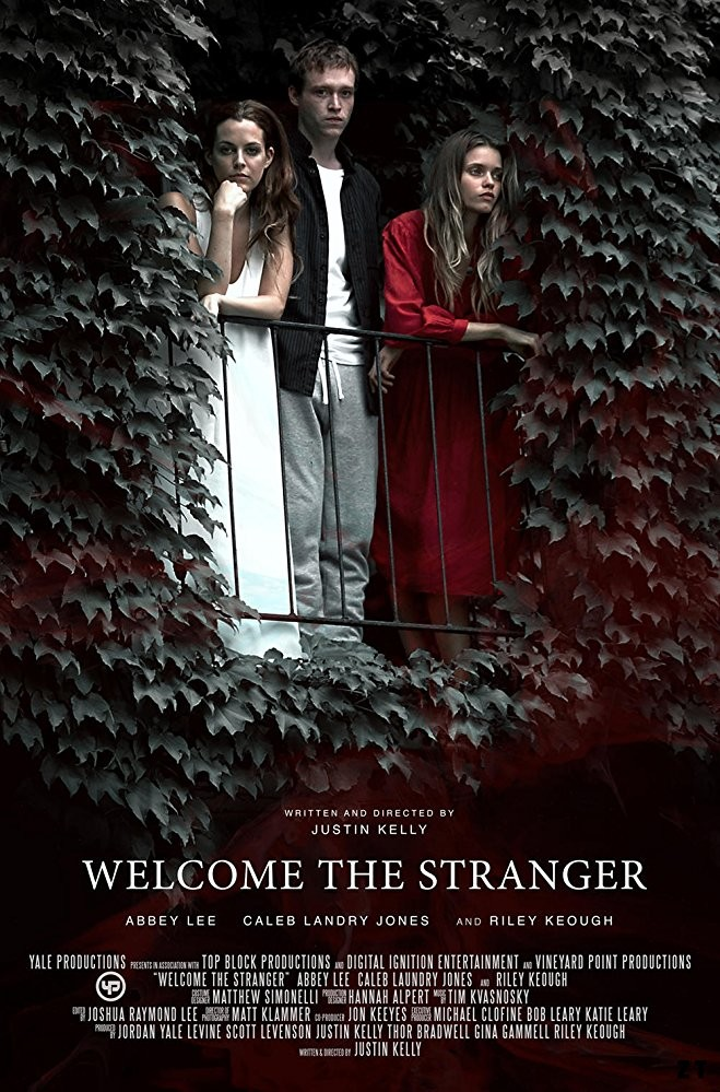 Welcome the Stranger FRENCH WEBRIP 2018